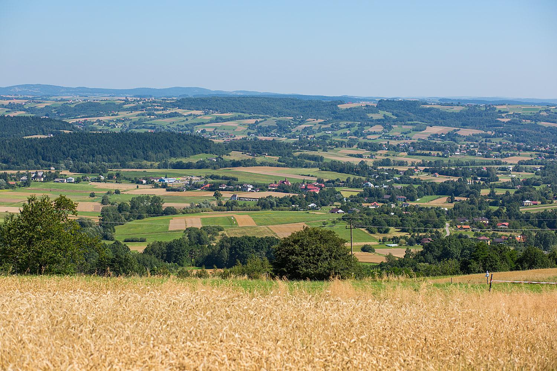 Wieś Mszanka